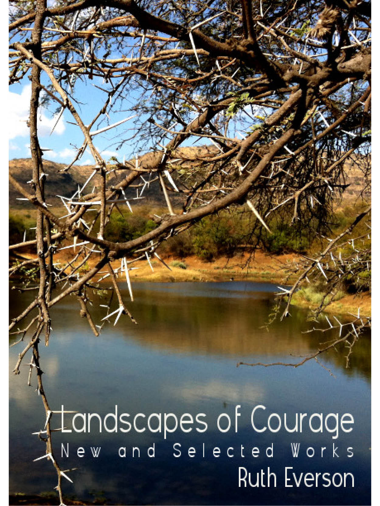 Cover of Landscapes of Courage by Ruth Everson