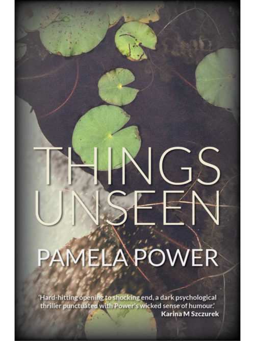 Cover of Things Unseen by Pamela Power