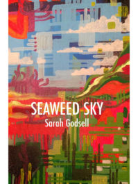 Cover of Seaweed Sky by Sarah Godsell